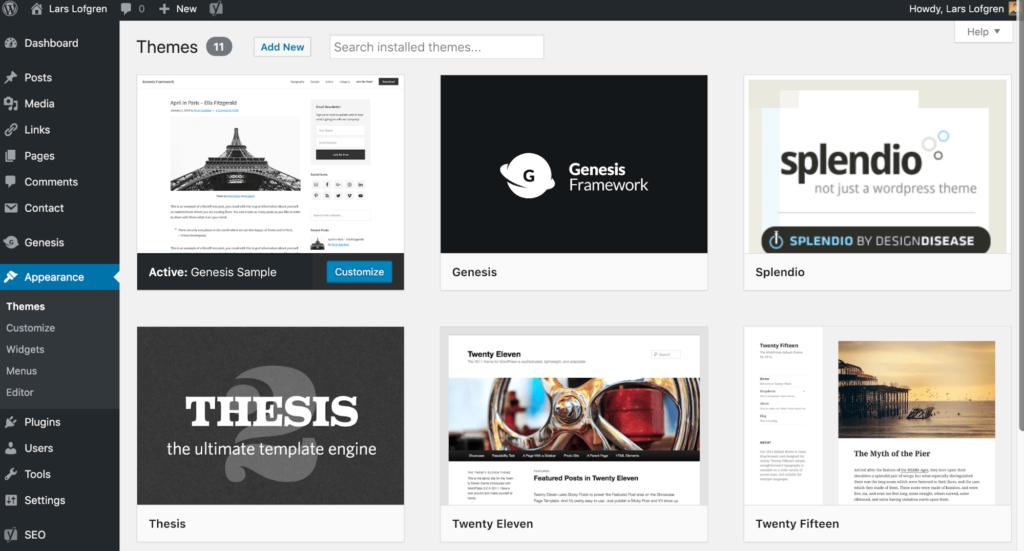 Administrar Temas de WordPress