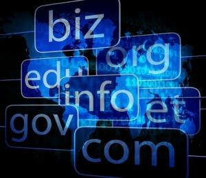 Tipos de dominios web